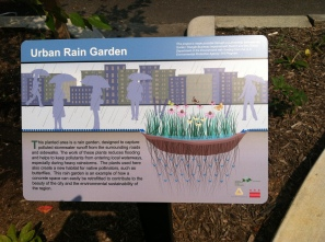 Urban rain garden sign on 19th Street NW, Washington DC.